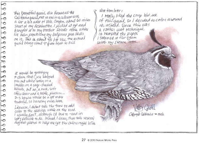 The quail journal page...